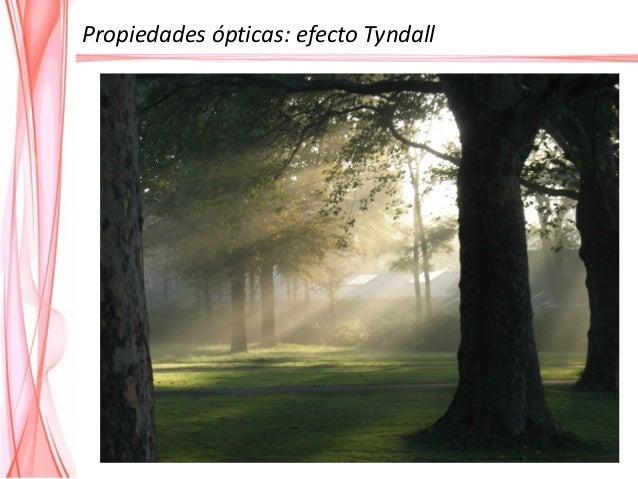 Propiedades ópticas: efecto Tyndall El efecto Tyndall puede utilizarse para diferenciar las dispersiones coloidales de las...