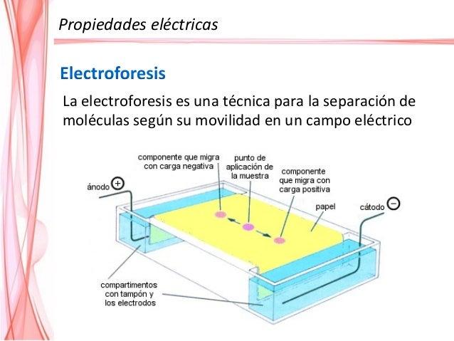Floculación Soles hidrófobos Soles hidrófilos agregado de electrolitos 1º deshidratación 2º agregado de electrolitos. Regl...