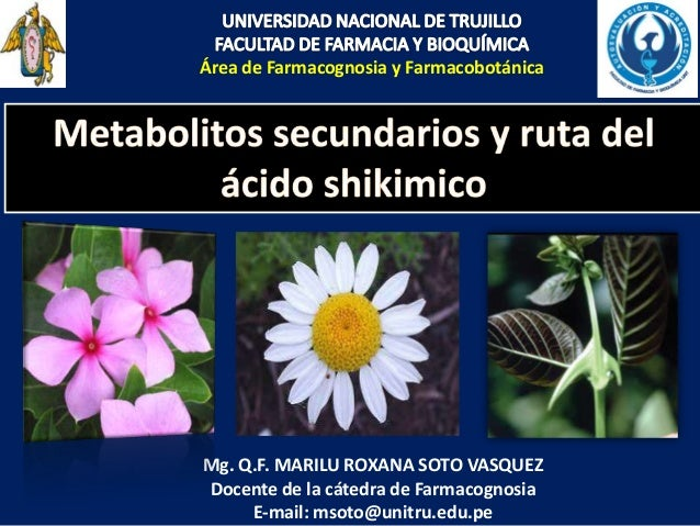 Área de Farmacognosia y Farmacobotánica Mg. Q.F. MARILU ROXANA SOTO VASQUEZ Docente de la cátedra de Farmacognosia E-mail:...