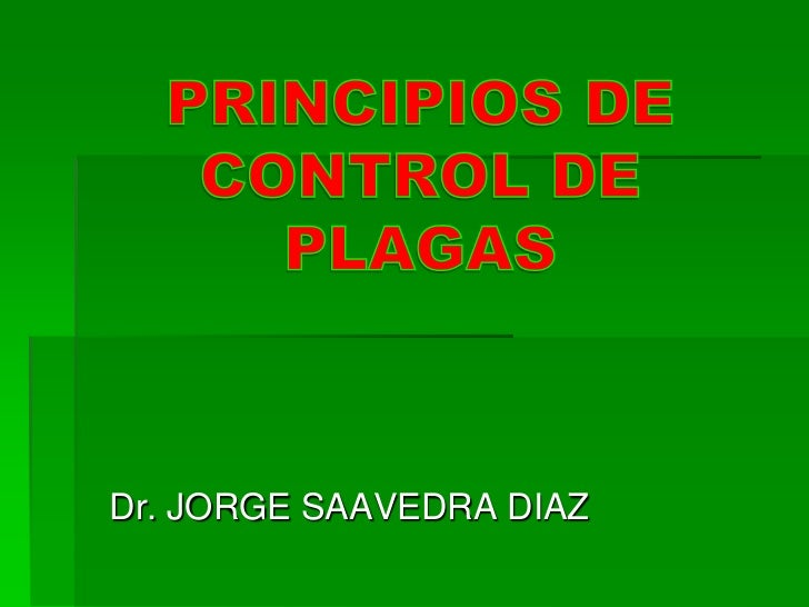 Dr. JORGE SAAVEDRA DIAZ