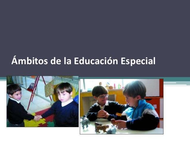 Ámbitos de la Educación Especial