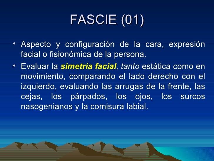 FASCIE (01) <ul><li>Aspecto y configuración de la cara, expresión facial o fisionómica de la persona. </li></ul><ul><li>Ev...