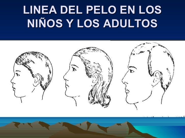 LINEA DEL PELO EN LOS NIÑOS Y LOS ADULTOS