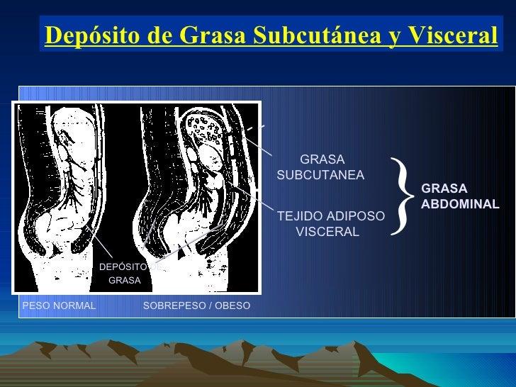 Depósito de Grasa Subcutánea y Visceral } PESO NORMAL  SOBREPESO / OBESO GRASA DEPÓSITO DE GRASA SUBCUTANEA  TEJIDO ADIPOS...