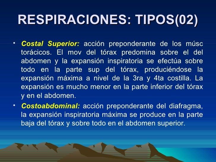 RESPIRACIONES: TIPOS(02) <ul><li>Costal Superior:  acción preponderante de los músc torácicos. El mov del tórax predomina ...