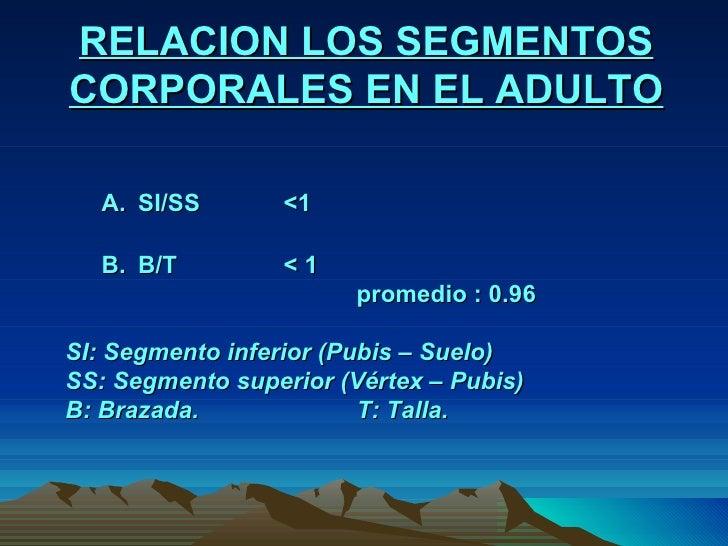 RELACION LOS SEGMENTOS CORPORALES EN EL ADULTO A. SI/SS  <1 B. B/T  < 1 promedio : 0.96 SI: Segmento inferior (Pubis – Sue...