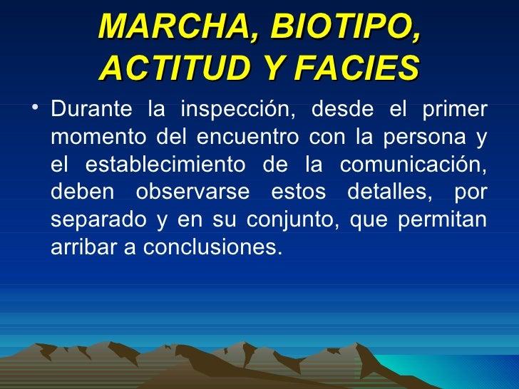 MARCHA, BIOTIPO, ACTITUD Y FACIES <ul><li>Durante la inspección, desde el primer momento del encuentro con la persona y el...