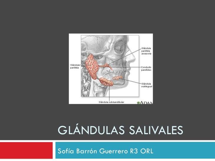 GLÁNDULAS SALIVALESSofía Barrón Guerrero R3 ORL