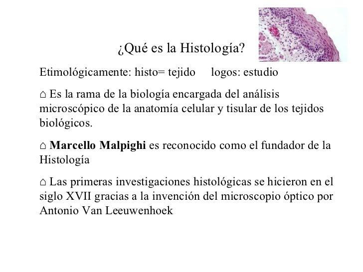 Clase I Histologia
