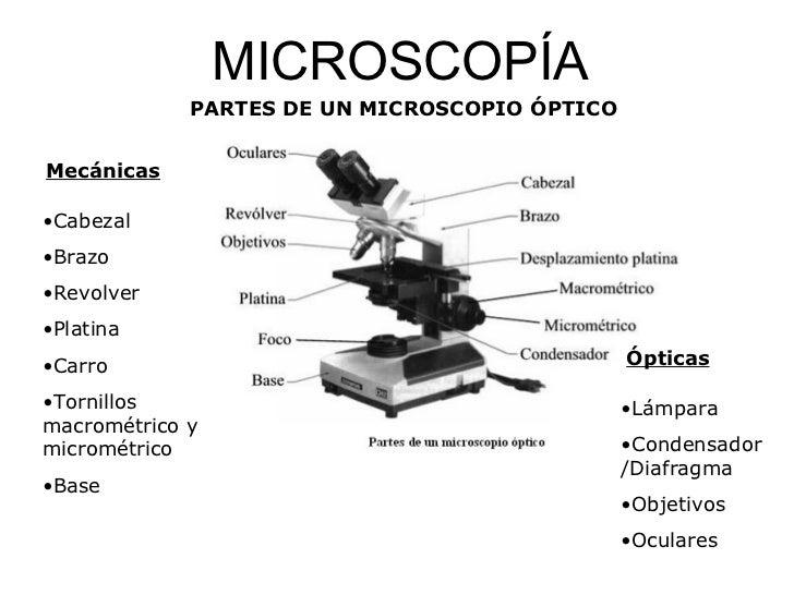 BIOLOG A Y MICROBIOLOG A AMBIENTAL