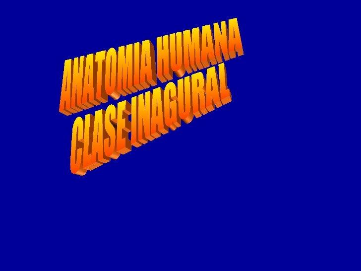 Clase N°1 Anatomia Humana