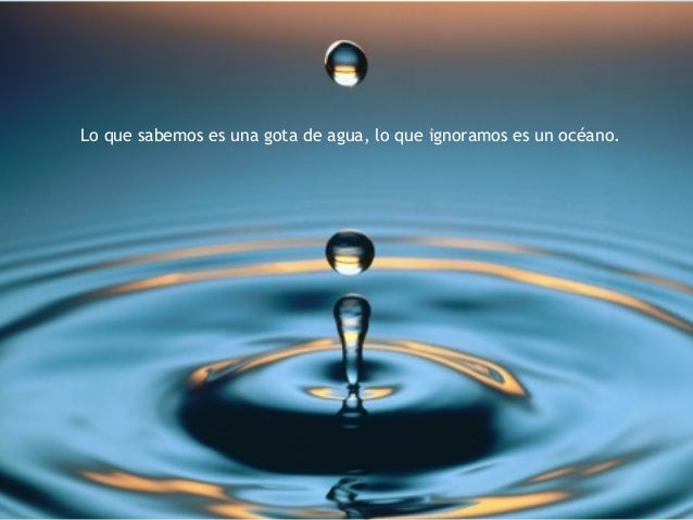 Lo que sabemos es una gota de agua, lo que ignoramos es un océano.