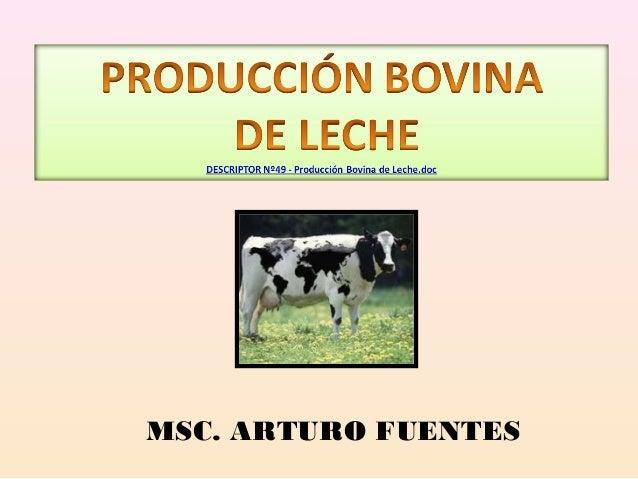 MSC. ARTURO FUENTES