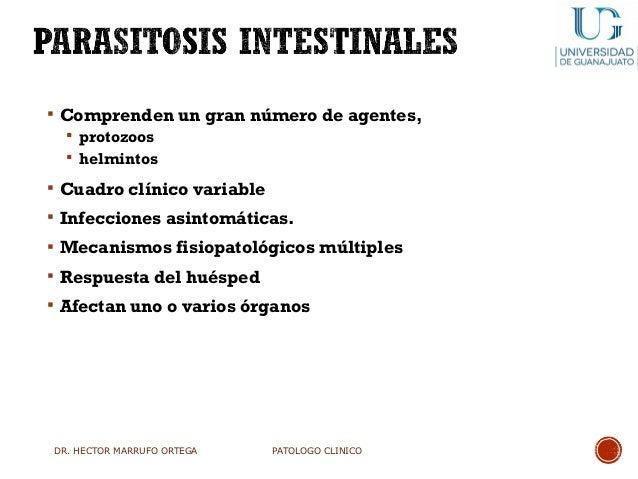 Clase parasitosis 2017 Slide 3