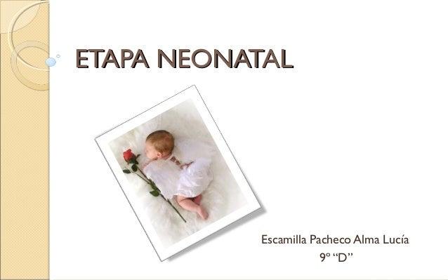 """ETAPA NEONATAL Escamilla Pacheco Alma Lucía  9º """"D"""""""