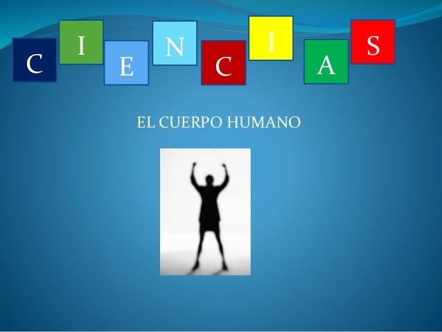 EL CUERPO HUMANO  C  I  E  N  C  I  A  S