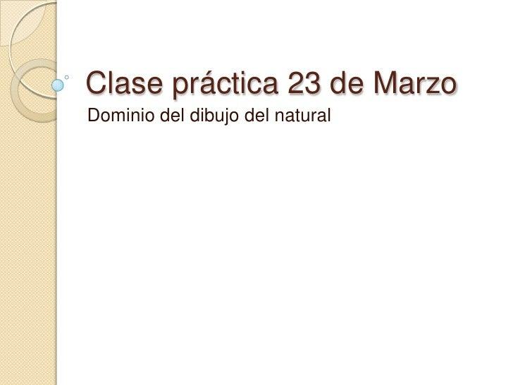 Clase práctica 23 de Marzo<br />Dominio del dibujo del natural<br />