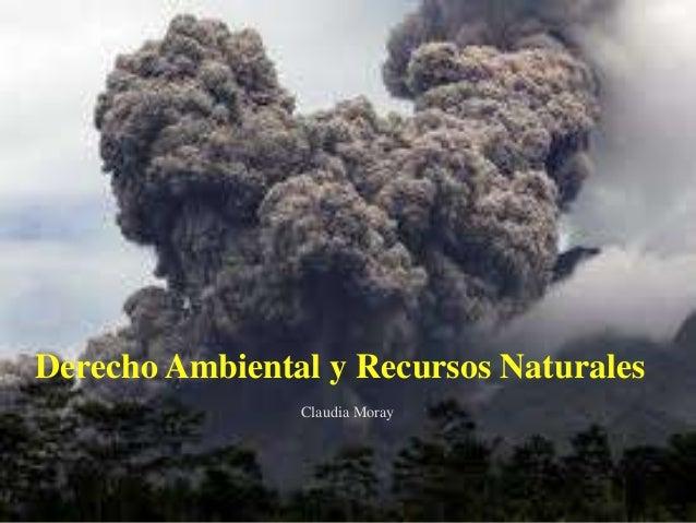 Derecho Ambiental y Recursos Naturales Claudia Moray  Claudia Moray