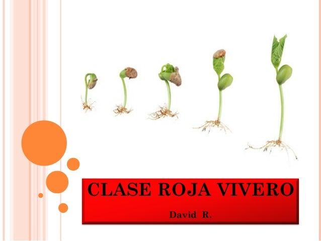CLASE ROJA VIVERO      David R.