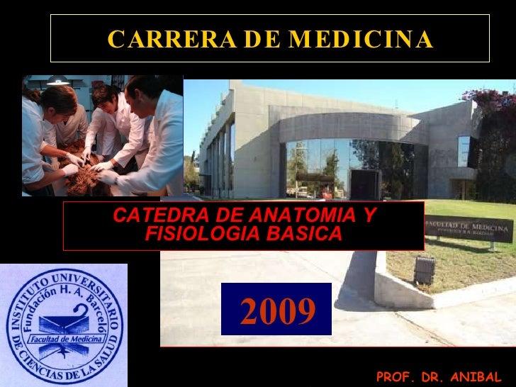 CARRERA DE MEDICINA CATEDRA DE ANATOMIA Y FISIOLOGIA BASICA 2009 PROF. DR. ANIBAL OJEDA