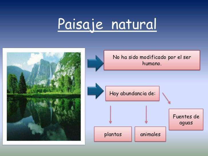 Clases de paisaje - Tipos de paisajes ...