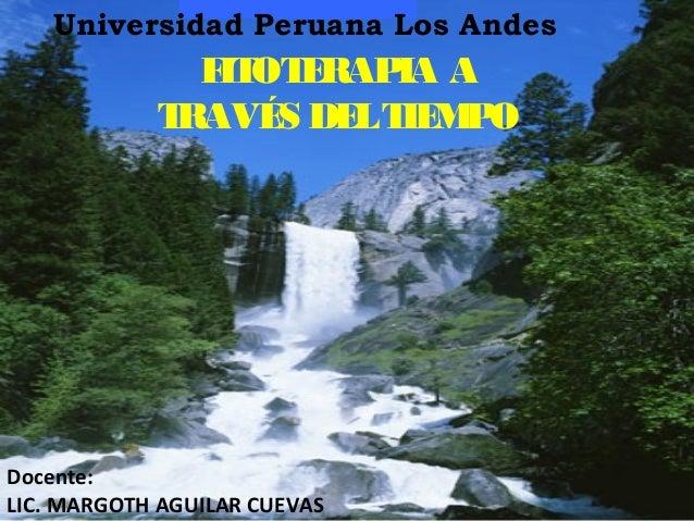 FITOTERAPIA A TRAVÉS DELTIEMPO Universidad Peruana Los Andes Docente: LIC. MARGOTH AGUILAR CUEVAS