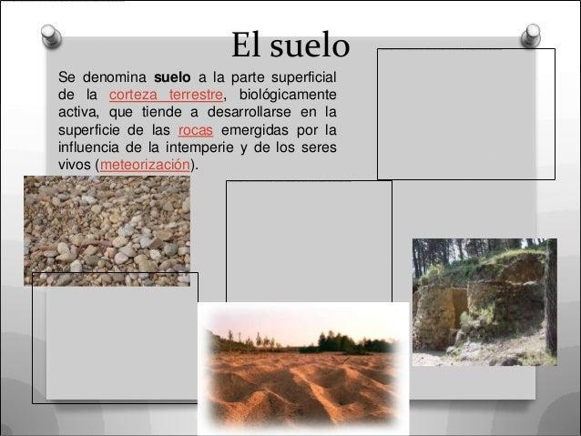 El sueloSe denomina suelo a la parte superficialde la corteza terrestre, biológicamenteactiva, que tiende a desarrollarse ...