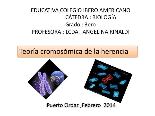 EDUCATIVA COLEGIO IBERO AMERICANO CÁTEDRA : BIOLOGÍA Grado : 3ero PROFESORA : LCDA. ANGELINA RINALDI Teoría cromosómica de...