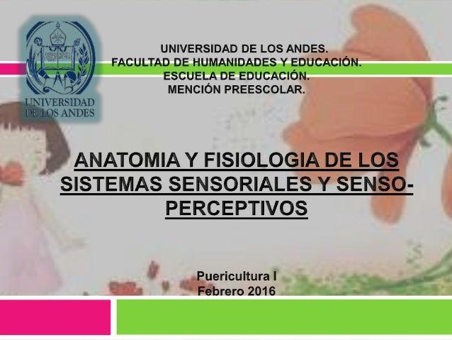 ANATOMIA Y FISIOLOGIA DE LOS SISTEMAS SENSORIALES Y SENSO-PERCEPTIVOS
