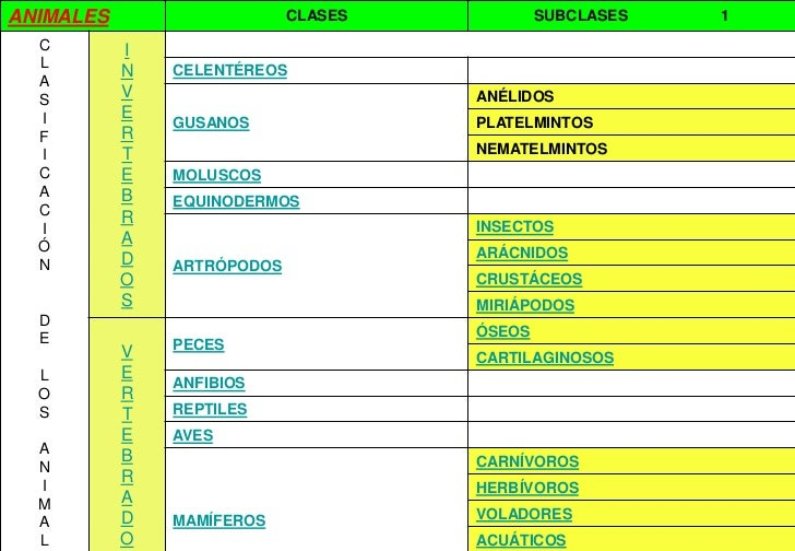 ANIMALES                    CLASES           SUBCLASES   1  C        I  L           N   CELENTÉREOS  A  S        V        ...