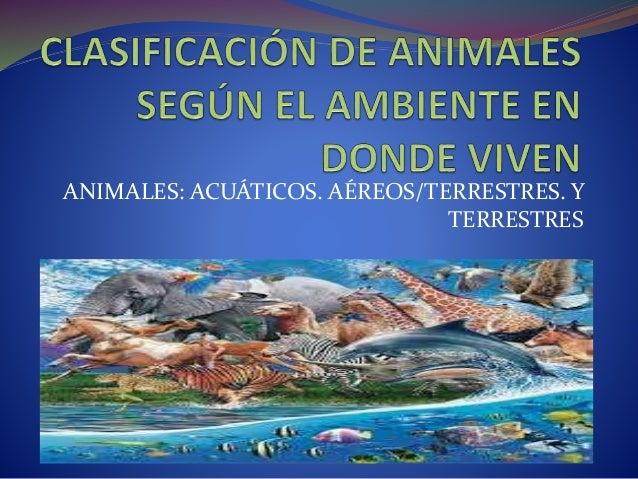 Clasificación De Animales Acuáticos Aéreos Terrestres Y Terrestres