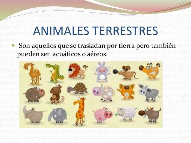 CLASIFICACIÓN DE ANIMALES: ACUÁTICOS  AÉREOS-TERRESTRES Y