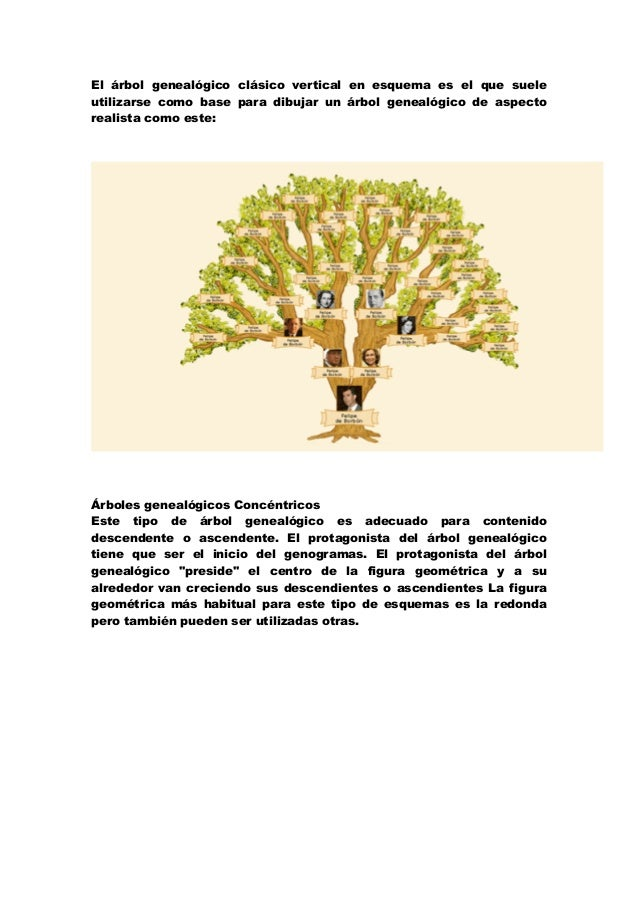 .arbol genealogico para niños material para imprimir