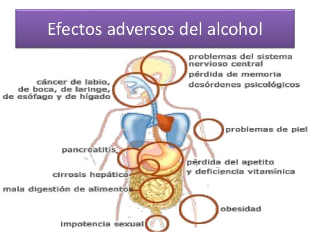 La ciencia que estudia el alcoholismo