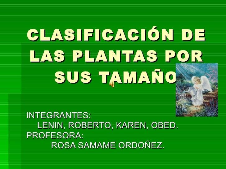 CLASIFICACIÓN DE LAS PLANTAS POR SUS TAMAÑO INTEGRANTES:  LENIN, ROBERTO, KAREN, OBED. PROFESORA:  ROSA SAMAME ORDOÑEZ.