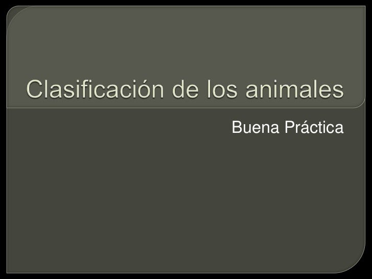 Clasificación de los animales<br />Buena Práctica<br />