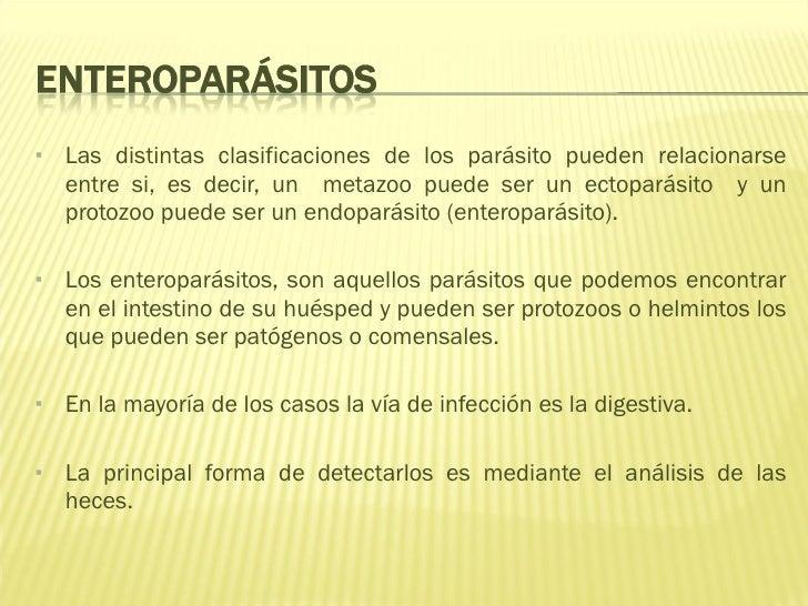 <ul><li>Las distintas clasificaciones de los parásito pueden relacionarse entre si, es decir, un  metazoo puede ser un ect...