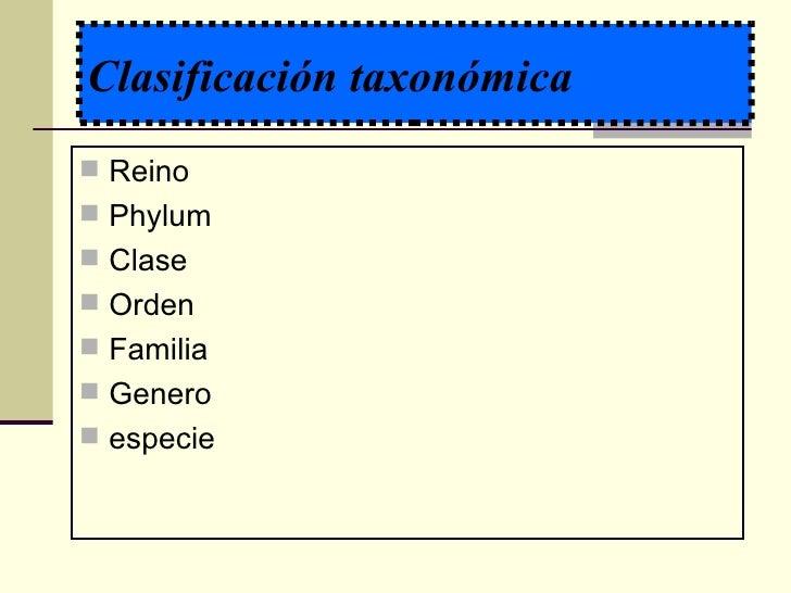 Clasificación de los parásitos Slide 3