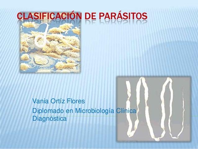 CLASIFICACIÓN DE PARÁSITOS   Vania Ortíz Flores   Diplomado en Microbiología Clínica   Diagnóstica