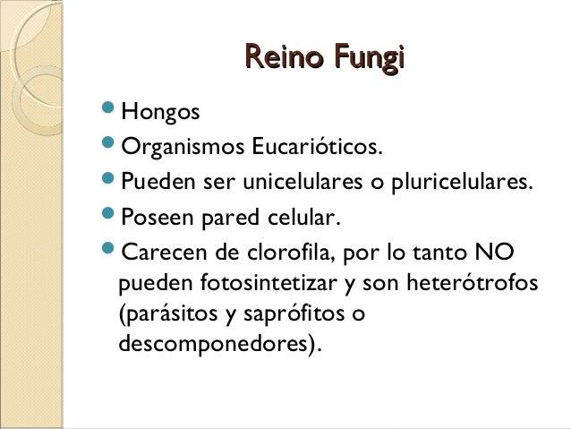 Lotseril como la medicina contra el hongo de las uñas