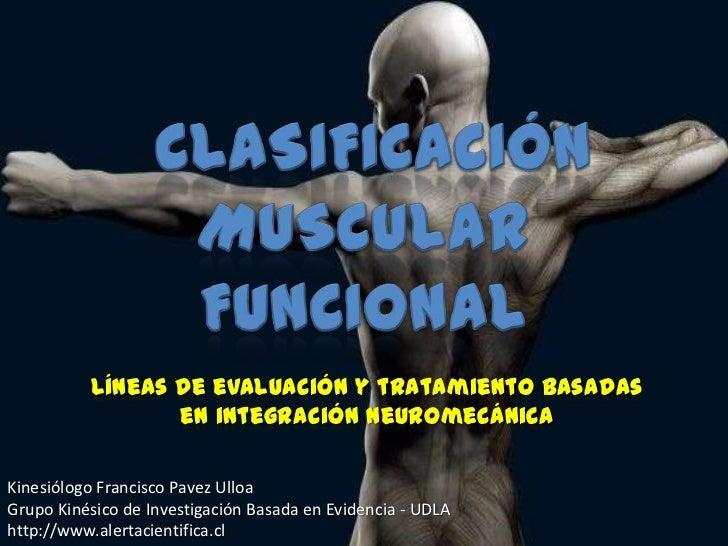 Líneas de evaluación y tratamiento basadas                 en integración neuromecánicaKinesiólogo Francisco Pavez UlloaGr...
