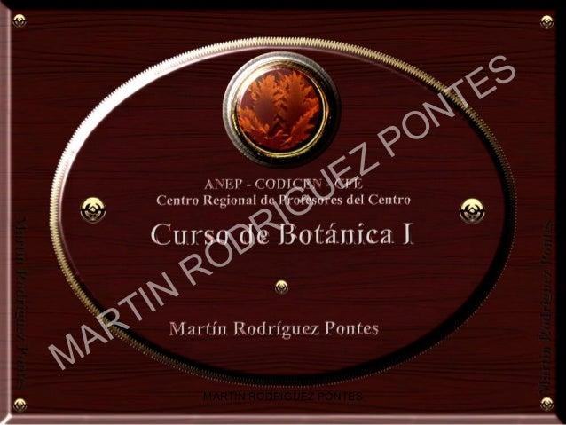 MARTIN RODRIGUEZ PONTES MARTIN RODRIGUEZ PONTES