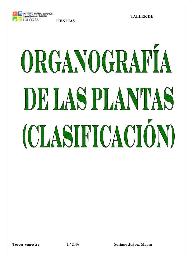TALLER DE                  CIENCIASTercer semestre       I / 2009   Soriano Juárez Mayra                                  ...