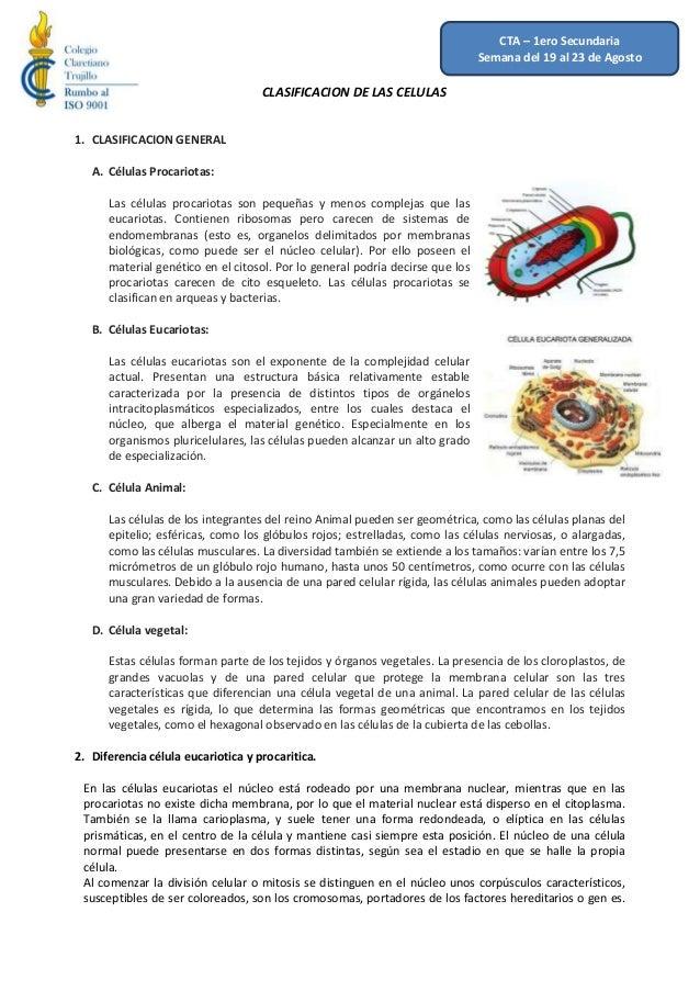 CLASIFICACION DE LAS CELULAS 1. CLASIFICACION GENERAL A. Células Procariotas: Las células procariotas son pequeñas y menos...