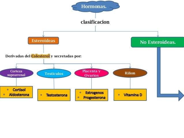 esteroides hormonas de crecimiento
