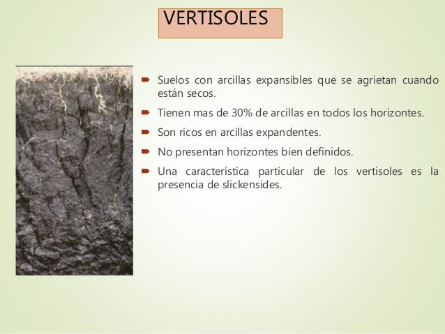 Clasificaciones taxon micas americana de los suelos for Caracteristicas de los suelos