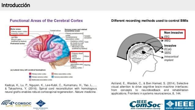 ⭐⭐⭐⭐⭐ 2020 TELTEC WEBINAR: Clasificación de señales de Electroencefalografía (#EEG) con redes neuronales en #FPGA Slide 3