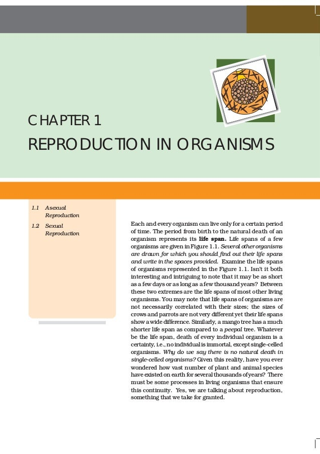 NCERT Books Class 12 Biology Chapter 1 Reproduction in Organism