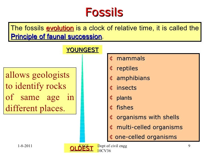 faunal succession relative dating How do scientists study the history of the earth pick up the who's on 1st relative dating activity 7 table describe the principle of faunal succession.
