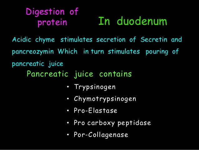 Pancreatic juice contains enzymes that help digest Coursework ...